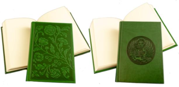 diari_verde